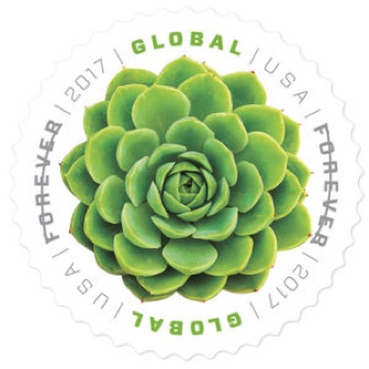 USA Global Forever Stamp, round green succulent design