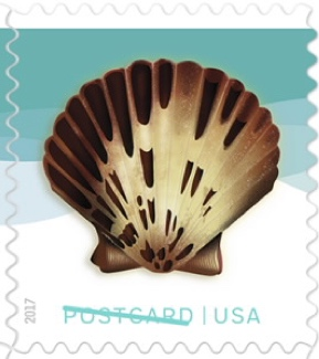 USA Postcard 35 cent stamp, brown shell with teal background
