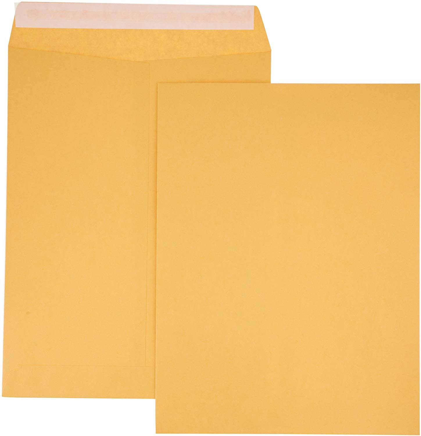Manilla envelope 8.5x11 showing front and back with sticky flap